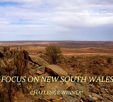 FOCUS ON NEW SOUTH WALES BANNER by su2anne