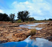 Hughies Rocks ~ Mullewa WA by Pene Stevens