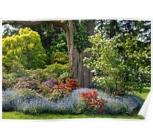 Springtime in Van Dusen Poster