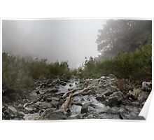 Foggy Stream Poster