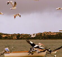 Coorong  by bobby1