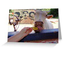 Banana for breakfast. Greeting Card