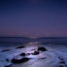 moon shine-redhead NSW by Rodney Trenchard
