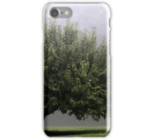 24.9.2015: Lonely Apple Tree iPhone Case/Skin