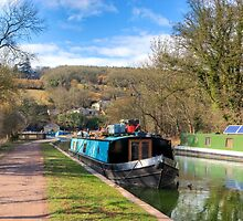 Along the Towpath by Roy Griffiths