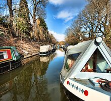 Kennet and Avon Canal by Roy Griffiths