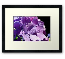 Chameleon of Flowers Framed Print