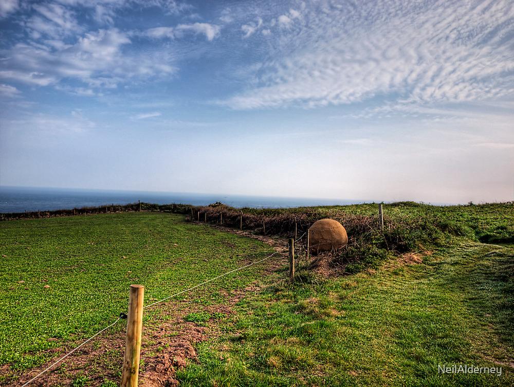"An ""Alderney Stone"" - Andy Goldsworthy by NeilAlderney"