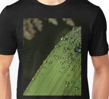 Dew Drops on an Iris leaf Unisex T-Shirt