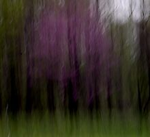Purple - An Abstract Expressionism by Mitch Labuda