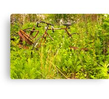 forgotten in the weeds Canvas Print