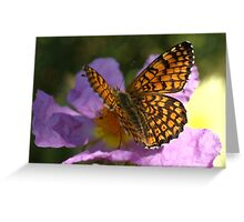 Fritillary Greeting Card