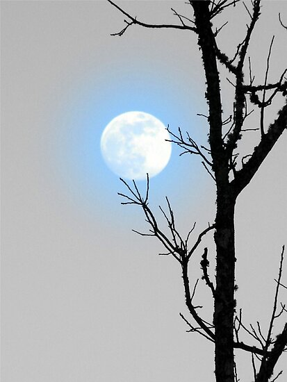 BLUE MOON by Jean Gregory  Evans
