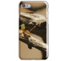 Green Ants iPhone Case/Skin