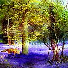 Bluebell Fox by Angela  Burman
