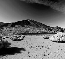 Teide, Tenerife's famous volcano by MWhitham