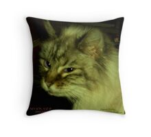 Nevada, 1993-2011 Throw Pillow