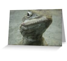 I see you focussing on my scaly beard... it's all mine you know! Greeting Card