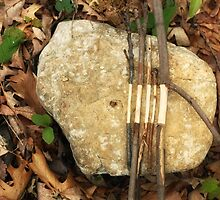 A Goldsworthy Tribute by Jeff Stanford