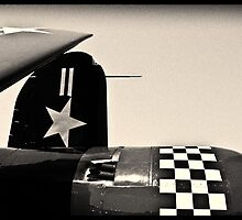 Lines of a Warbird by Anthony Tokarz