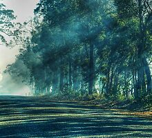A Quiet Country Road In My Hometown by Eve Parry