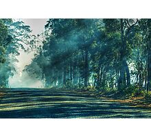 A Quiet Country Road In My Hometown Photographic Print