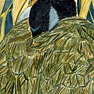 108 - CANADA GOOSE - DAVE EDWARDS - WATERCOLOUR - JUNE 2003 by BLYTHART