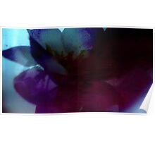 flowers of abstract Poster