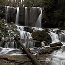 Virginia Hawkins Falls by DHParsons