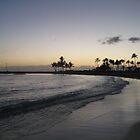 Sunset in Hawaii by kevmarcn