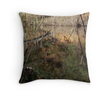 Cutting the Reflection Throw Pillow