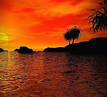 Tropical Sunset by Norma Jean Lipert