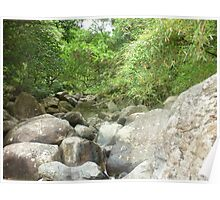 tiny stream trickle through huge white boulders surrounded by trees Poster