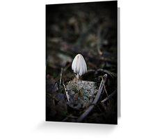 Lonely Little Mushroom Greeting Card