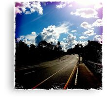 lonely road Canvas Print