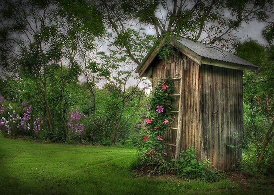 Fragrant Outhouse by Lori Deiter