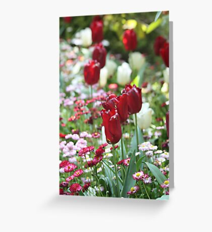 Passion and Purity Greeting Card