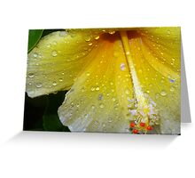 Drenched by a tropical storm Greeting Card