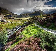 Snowdonia - Path to Tryfan and Glyder Fach by Angie Latham