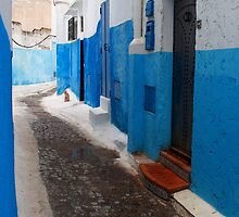 Moroccan Cat in a Blue and White Alley by Georgina Steytler