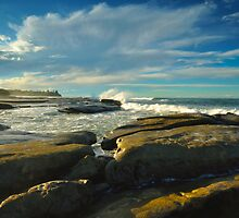 Winter Light-Shelly Beach by Michael Hallam