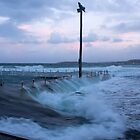 North Narrabeen rock pool 31/05/2011 by Doug Cliff