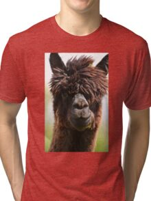 Alpaca Tri-blend T-Shirt