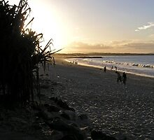 Noosa Beach by John Vriesekolk