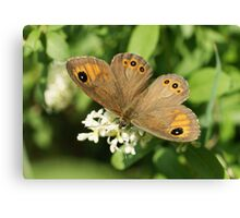 Large Wall Brown Canvas Print