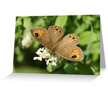 Large Wall Brown Greeting Card
