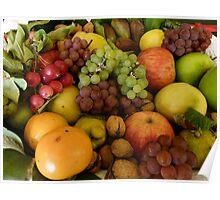 Tasmanian Harvest Selection Poster