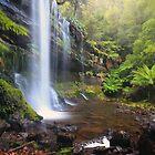 Russell Falls- Mt Field, Tasmania by Cameron B