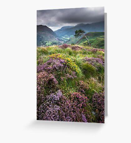 Snowdonia - Heather & Gorse above Beddgelert Greeting Card