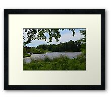 Windy Day at Powell Gardens  Framed Print